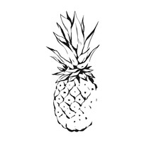 Hand Drawn Vector Abstract Exotic Tropical Ink Graphic Drawing Fruit Pineapple Illustration Icon Isolated On White Background.Healthy Lifestyle Concept