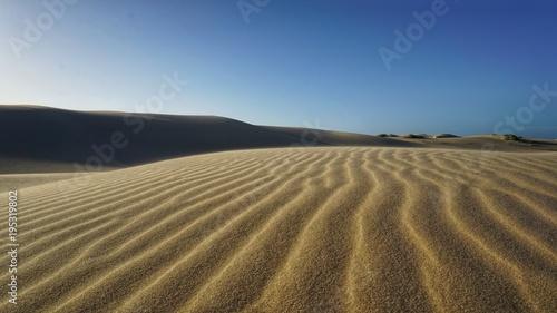 Foto op Canvas Droogte Wüste | Sandwüste am Birubi Beach, NSW, Port Stephens, Australien