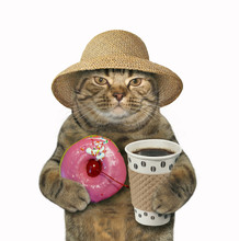 The Cat In A Straw Hat Holds A...