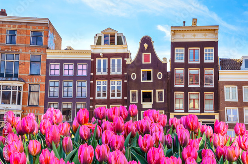 Photo  Traditional old buildings and tulips in Amsterdam, Netherlands