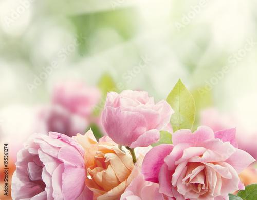 In de dag Bloemen rosas en el jardín