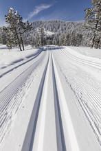 Cross-country Ski Trail On A B...