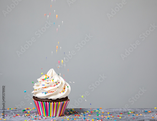 Decorating Cupcake with Sprinkles Canvas Print