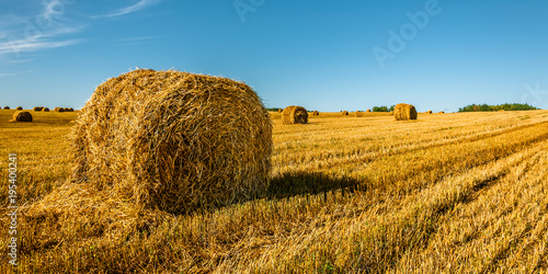 Foto op Aluminium Blauw summer agricultural landscape. A straw bale left in the foreground on field after harvesting under a beautiful blue sky