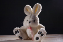 Plush White Bunny, Stuffed Toy