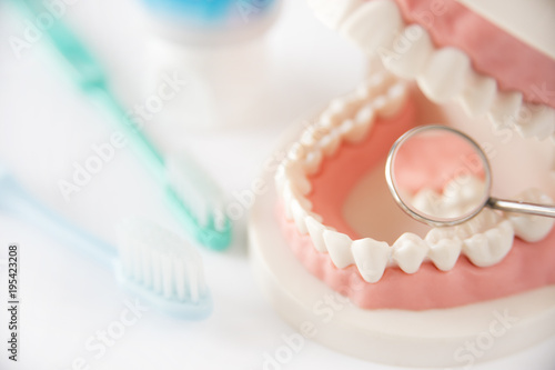 Fotografia デンタルケア 歯科 歯磨き 健診