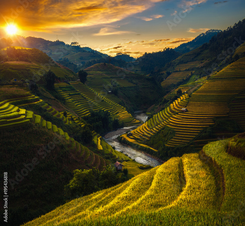 Fotobehang Rijstvelden Rice field and rice terrace in Mu cang chai