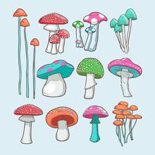 Mushroom Vector Set