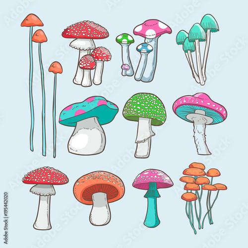 Obraz na plátně mushroom vector set