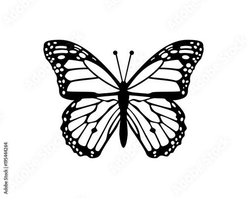 Fotografie, Obraz  Beautiful Flying Butterfly Sign Symbol Animal Icon Logo Vector