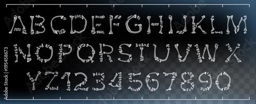 Bone Font Vector Wallpaper Mural
