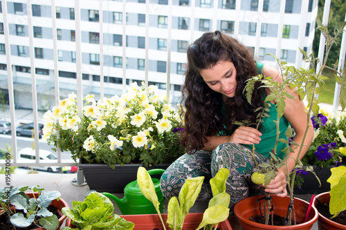 Fotografie, Obraz Woman caring of her small kitchen garden in the balcony