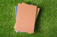 Old  Book On Green Grass