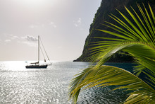 Yacht Moored Close To The Base Of Petit Piton, Near Sugar Beach With Palm Leaves In The Foreground, St. Lucia, Windward Islands Caribbean