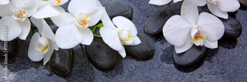 Keuken foto achterwand Orchidee White orchids flowers and spa stones .