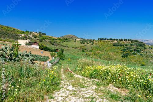 Foto op Canvas Pistache landscape of Sicily