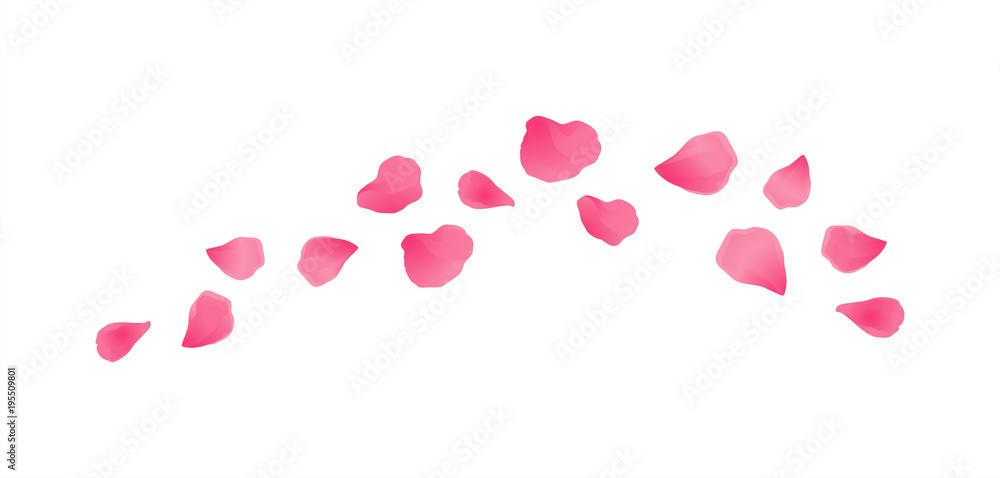 Fototapeta Pink flying petals isolated on White background. Sakura Roses petals. Vector