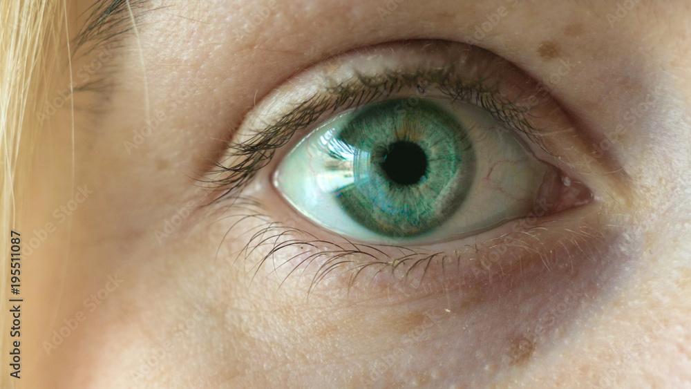 Piękne zielone oko dziewczyny, blondynka, piegi.