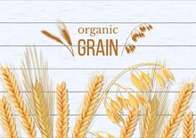 Wheat, Barley, Oat And Rye On ...