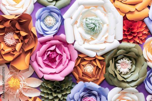 Fototapeta kolorowe kwiaty 3D