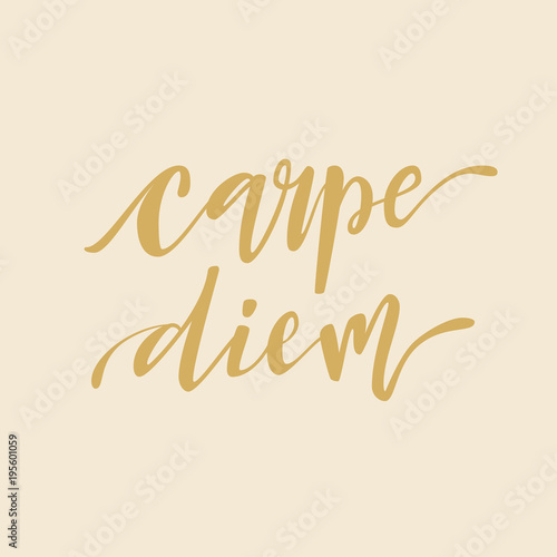 Carpe diem hand lettering quote illustration with decorative ...