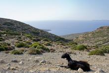 Isola Di Creta, Meraviglia Del...