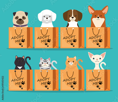 dogs and cats pets in adoption bags characters Canvas Print