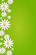 Spring Flowers On Green Background Vector Illustration