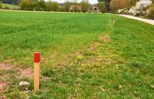 Markierter Grenzverlauf Bei Der Landvermessung