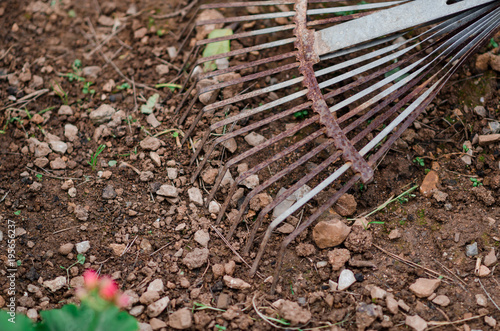 Fotografía de un rastrillo oxidado en el huerto de casa. – kaufen ...