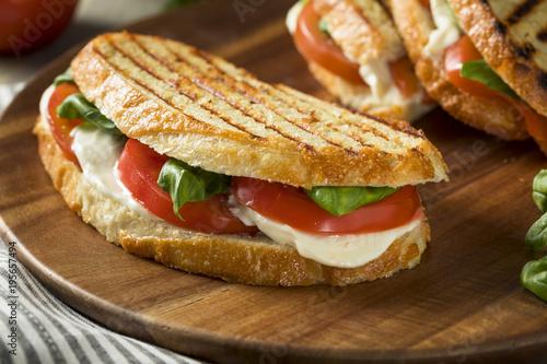 Staande foto Snack Healthy Grilled Basil Mozzarella Caprese Panini