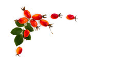 Fresh Red Fruits Dog Rose, Briar (Rosa Rubiginosa, Rose Hips) With Leaves On A White Background. Top View, Flat Lay.