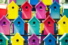 A Lot Of Colorful Birdhouses. The Concept Of The Hostel, Friendly Neighborhood, Common Space.