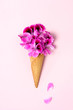 Geranium flowers in wafer ice cream cone with two falling petals