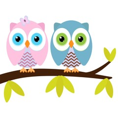 two owls on a branch