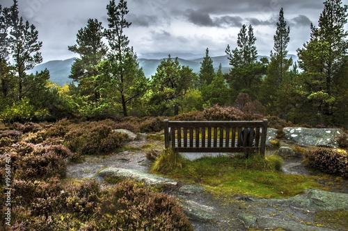 Photo Craigendarroch Hill, Ballater, Aberdeenshire, Scotland, United Kingdom