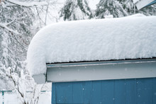 Thick Snow Accumulated On Top ...