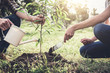 canvas print picture - Young couple planting the tree while Watering a tree working in the garden as save world concept, nature, environment and ecology