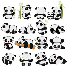 Fototapeta Panda hand drawing cute panda with a lot of variation