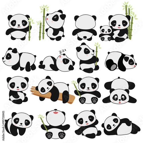 Photo  hand drawing cute panda with a lot of variation