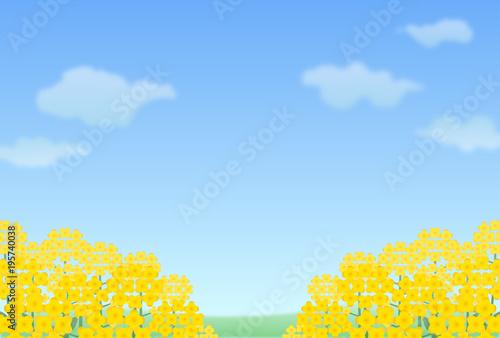 菜の花畑 Adobe Stock でこのストックイラストを購入して