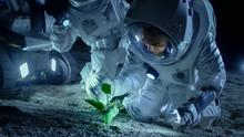 Two Astronauts On The Alien Planet Discover Plant Life. Space Travel, Discovery Of Habitable Worlds And Colonization Concept.