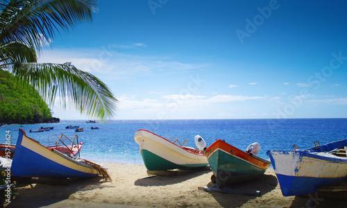 Plage, palmier et bateaux face à la mer des caraïbes Wallpaper Mural