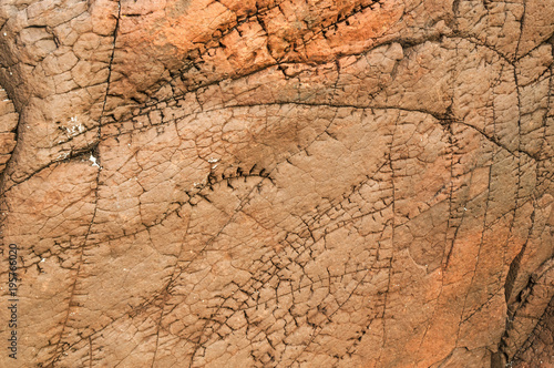 Photo  Scarface / A close up image, taken at Clachtoll in Scotland, of sedimentary rock that looks like it has stitching scar lines
