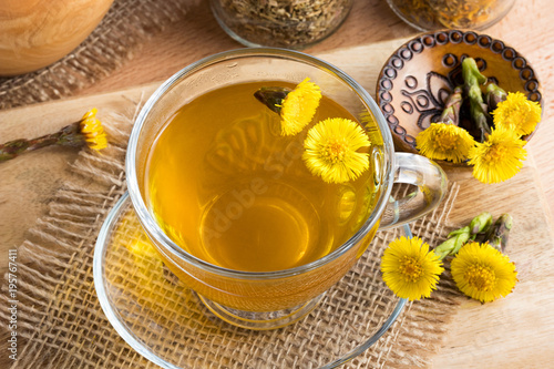 Valokuva  Fresh coltsfoot (Tussilago farfara) tea with coltsfoot flowers