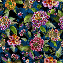 Beatiful Lantana Flowers With Green Leaves On Black And Blue Background. Seamless Floral Pattern.  Watercolor Painting. Hand Drawn Illustration.