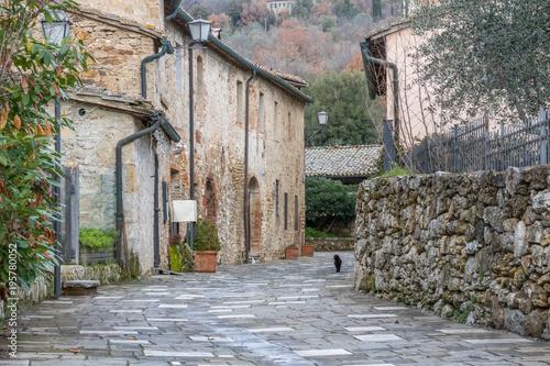 Valokuva  Gasse mit Katze in Bagno Vignoni, San Quirico d'Orcia, Toskana, Italien