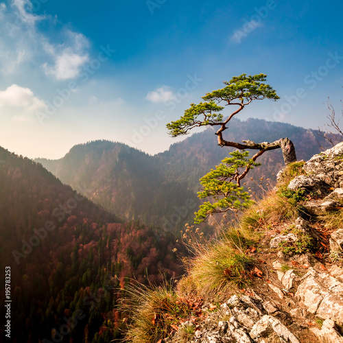 Sokolica peak in Pieniny mountains in autumn, Poland
