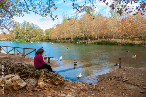 Girl looking at the ducks in Santa Anna lake Poster