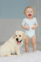 Little Girl With Labrador Puppy
